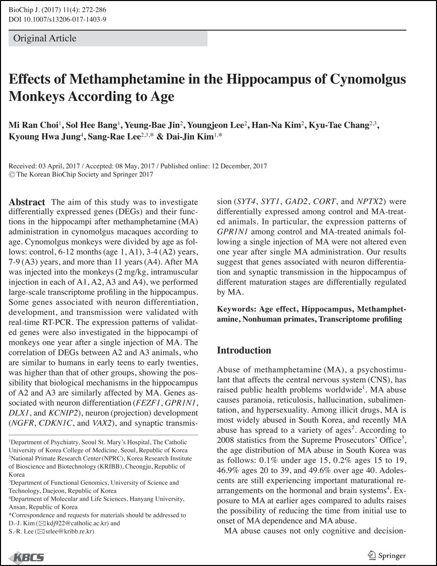 Effects of methamphetamine in the hippocampus of cynomolgus monkeys according to age